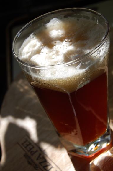 savvyhousekeeping homemade beer
