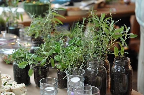 savvyhousekeeping herbs wedding favors