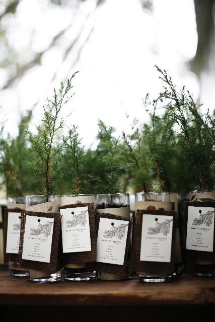 savvyhousekeeping tree sapling wedding favors