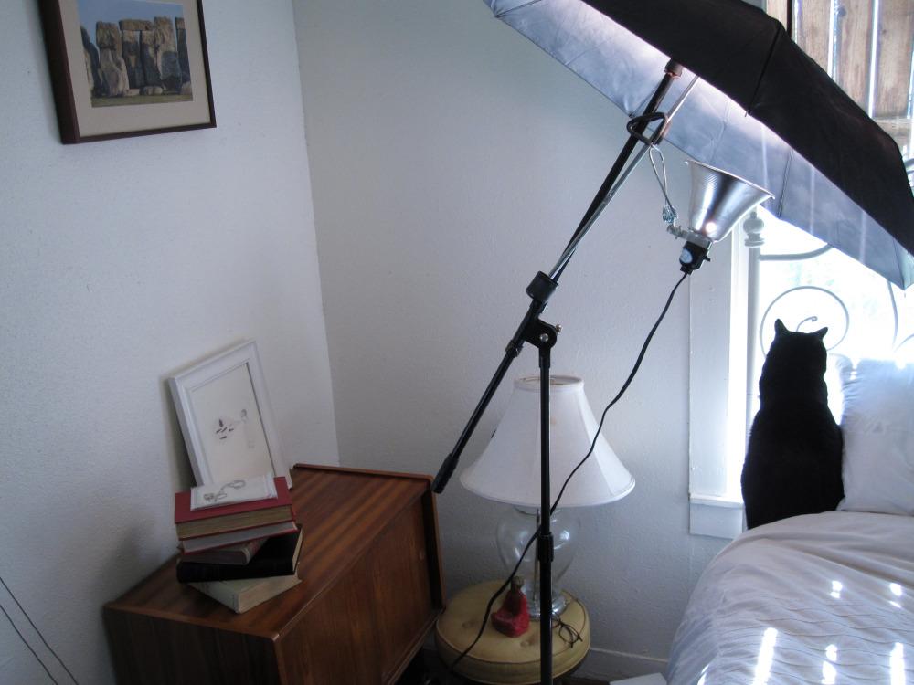 savvyhousekeeping make reflective camera light photography