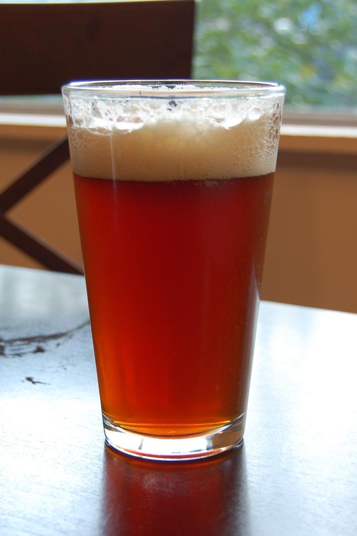 savvyhousekeeping make your own lagunita brown shugga beer