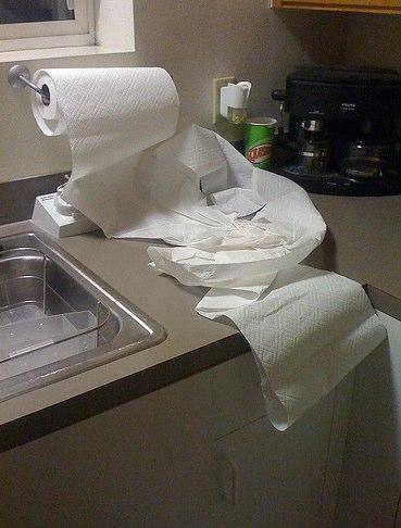 savvyhousekeeping saving money on paper towels