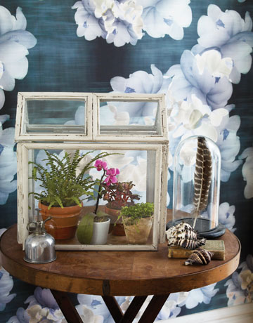 savvyhousekeeping make your own terrarium from picture frames