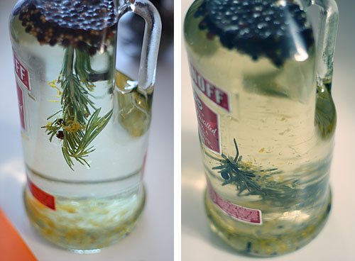 savvyhousekeeping make your own gin from vodka infused