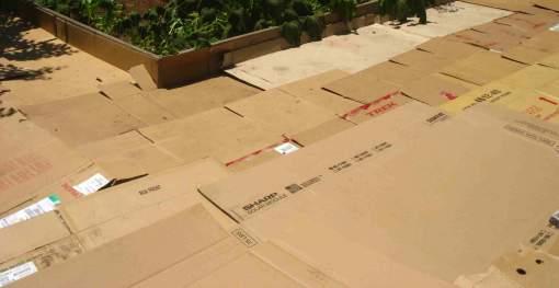 savvyhousekeeping sheet cardboard newspaper mulching