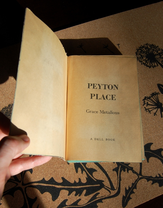 savvyhousekeeping thrift store finds old paperbacks peyton's place