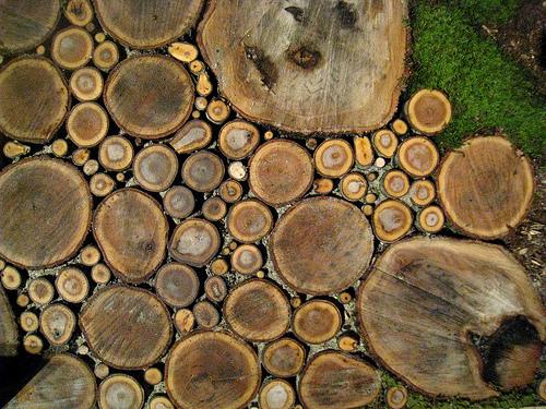 savvyhousekeeping wood slice walkway