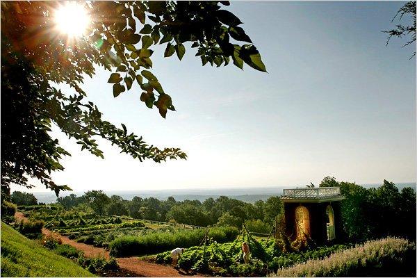 savvyhousekeeping thomas jefferson's garden methods monticello