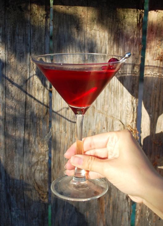 savvyhousekeeping thanksgiving round-up cranberry margarita
