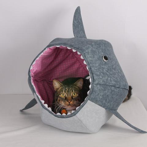 Shark_New_2_large